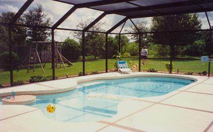 Pool Enclosure Screen Cleaning